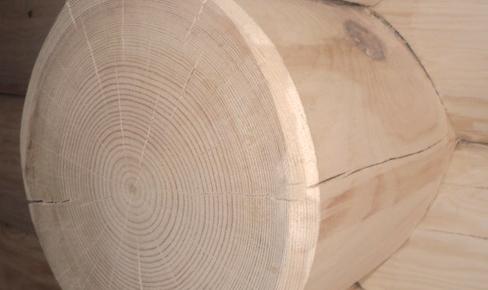 отделка сруба, log butt grinding